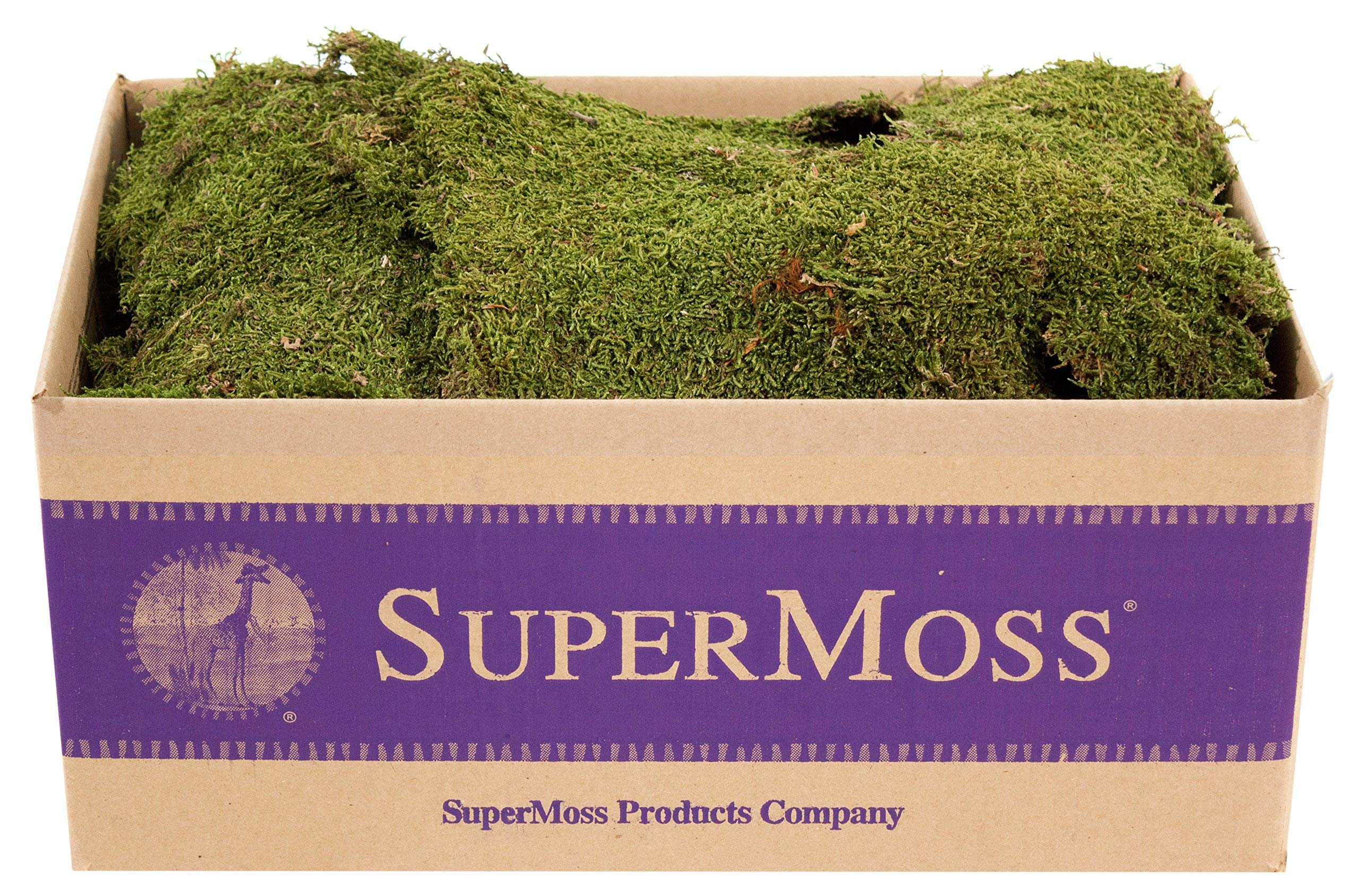 SuperMoss (21588) Sheet Moss Dried, Natural, 5lbs (20-24 sq. ft.) (Renewed) by Super Moss