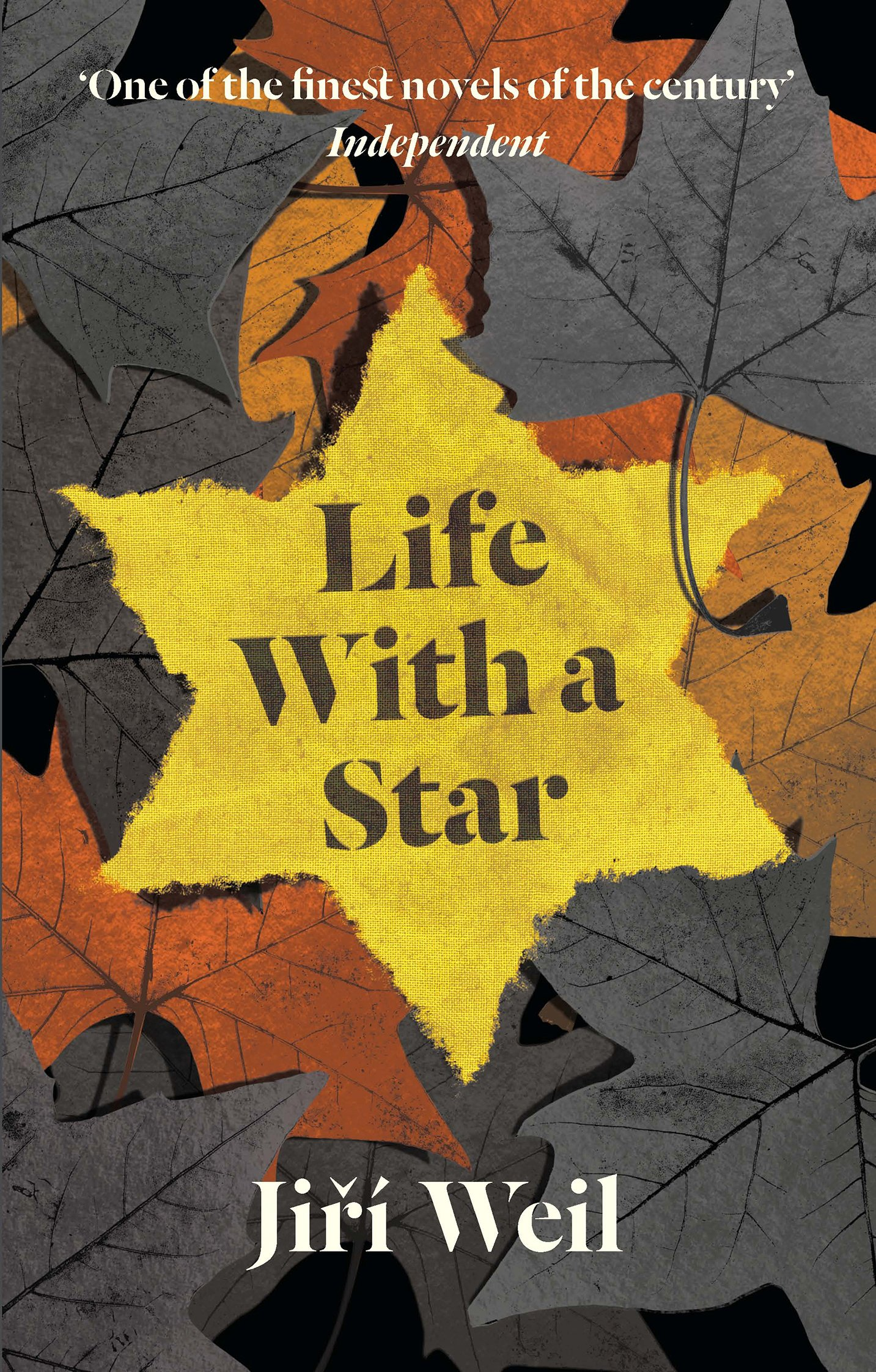 Image result for life with a star jiri weil amazon