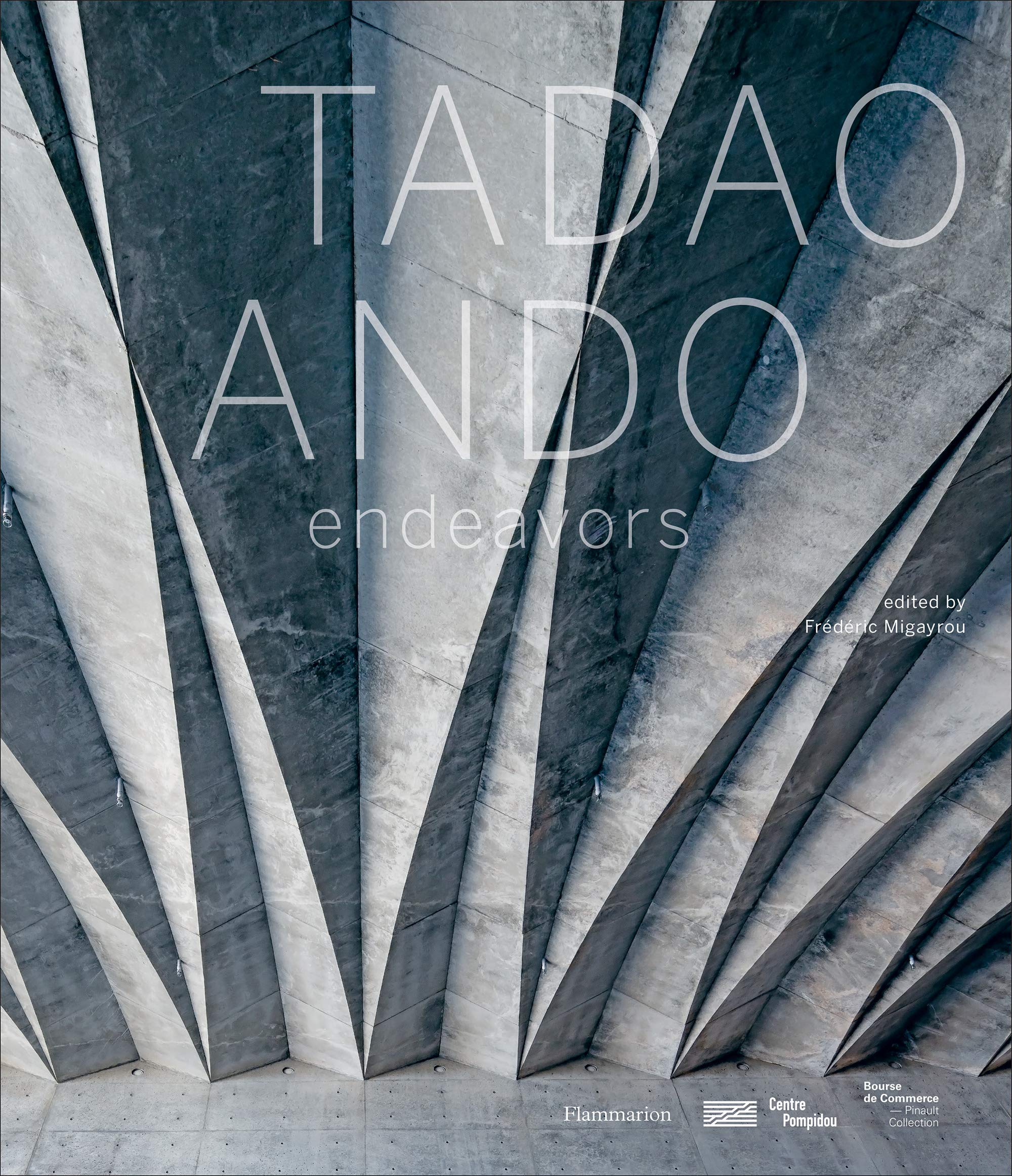 Tadao Ando: Endeavors by Flammarion