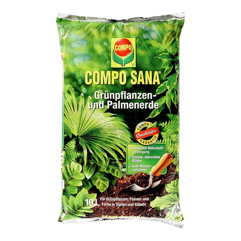 COMPO SANA Grünpflanzen  Und Palmenerde Mit 8 Wochen Dünger Für Alle  Zimmer  Und Balkonpflanzen Sowie Palmen Und Farne, Kultursubstrat, 10  Liter: Amazon.de: ...