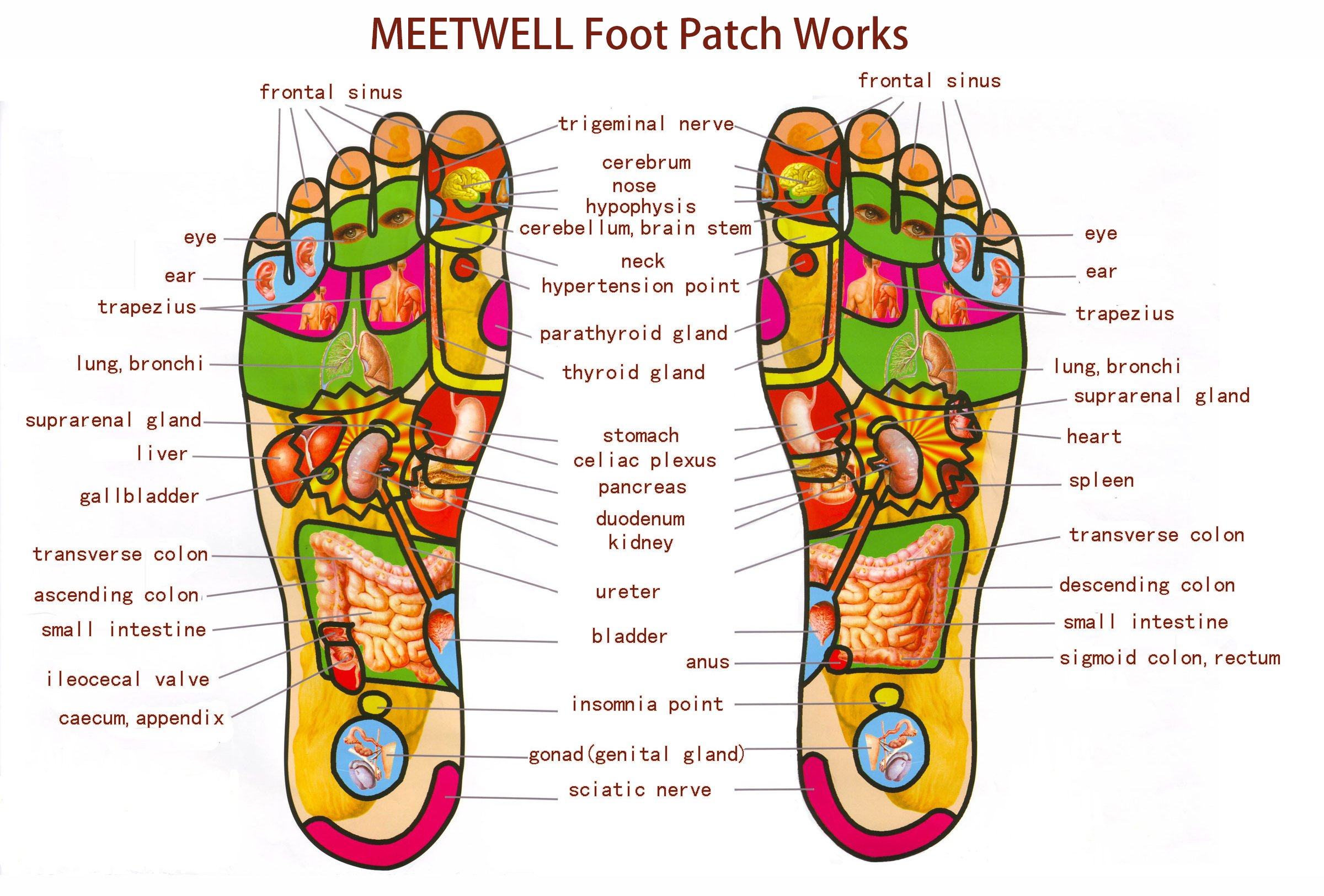MEETWELL Foot Patch, Body Relief and Tired Foot Relief Pads, Herbal Artemisia Argyi Powder and Essential Oil, Bamboo Vinegar Essence Foot Care Pads, 10 Pieces (5 Pairs)
