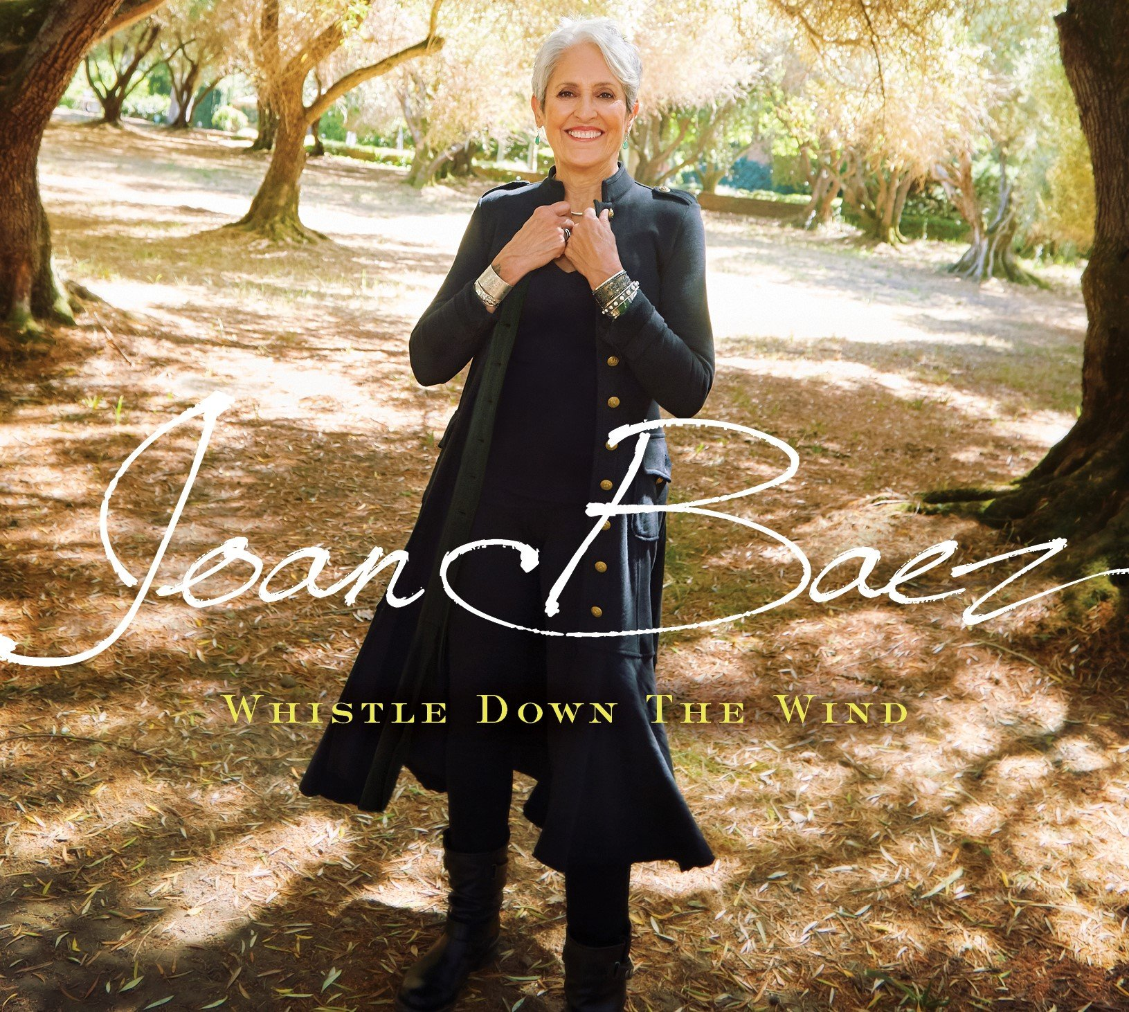Joan Baez - Whistle Down The Wind (Gatefold LP Jacket)