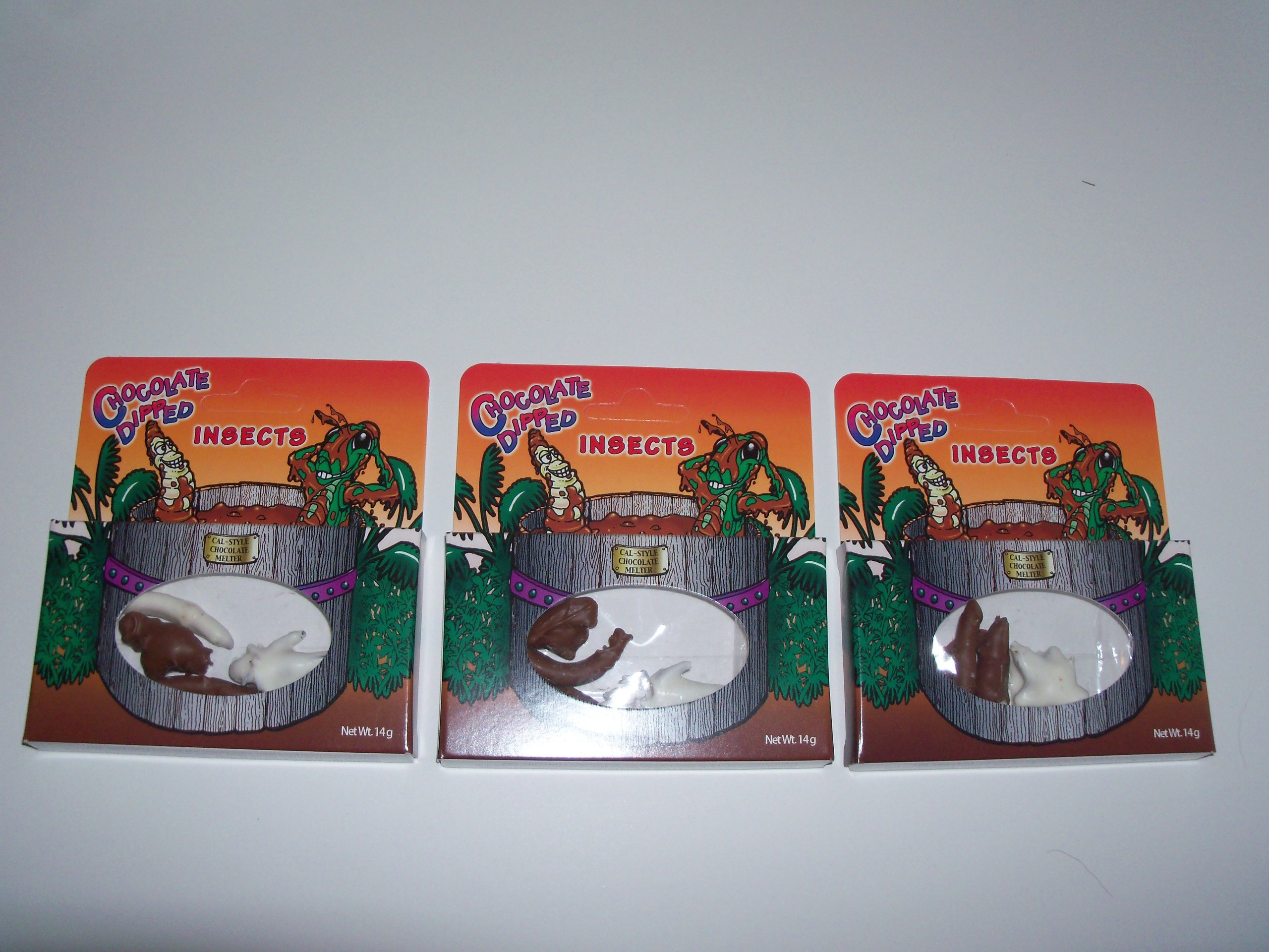 CHOCOLATE DIPPED INSECTS Pack of 3- (Crickets & Worms)