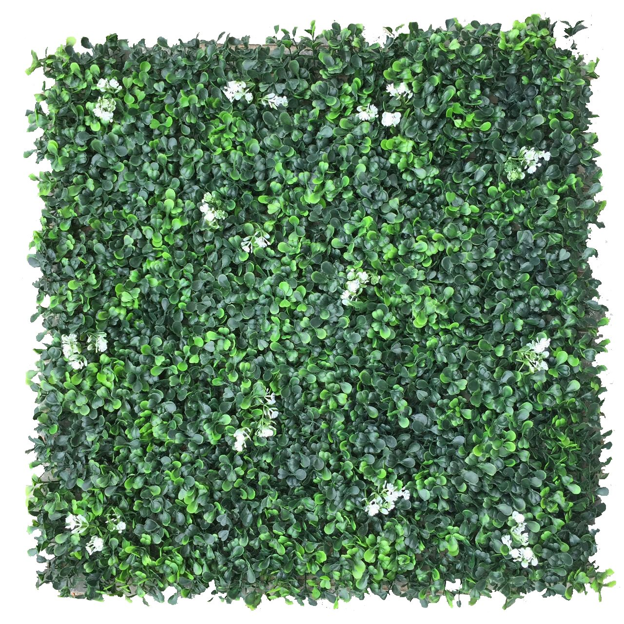 Porpora Artificial Hedge Plant, Greenery Panels Suitable for Both Outdoor or Indoor use, Garden, Backyard and/or Home Decorations, Boxwood with white Flower 20 x 20 Inch (12 pack) by e-Joy