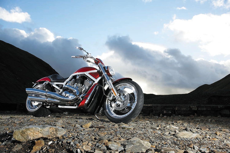 180//55-18 Avon Cobra AV72 Cruiser Motorcycle Tire Rear