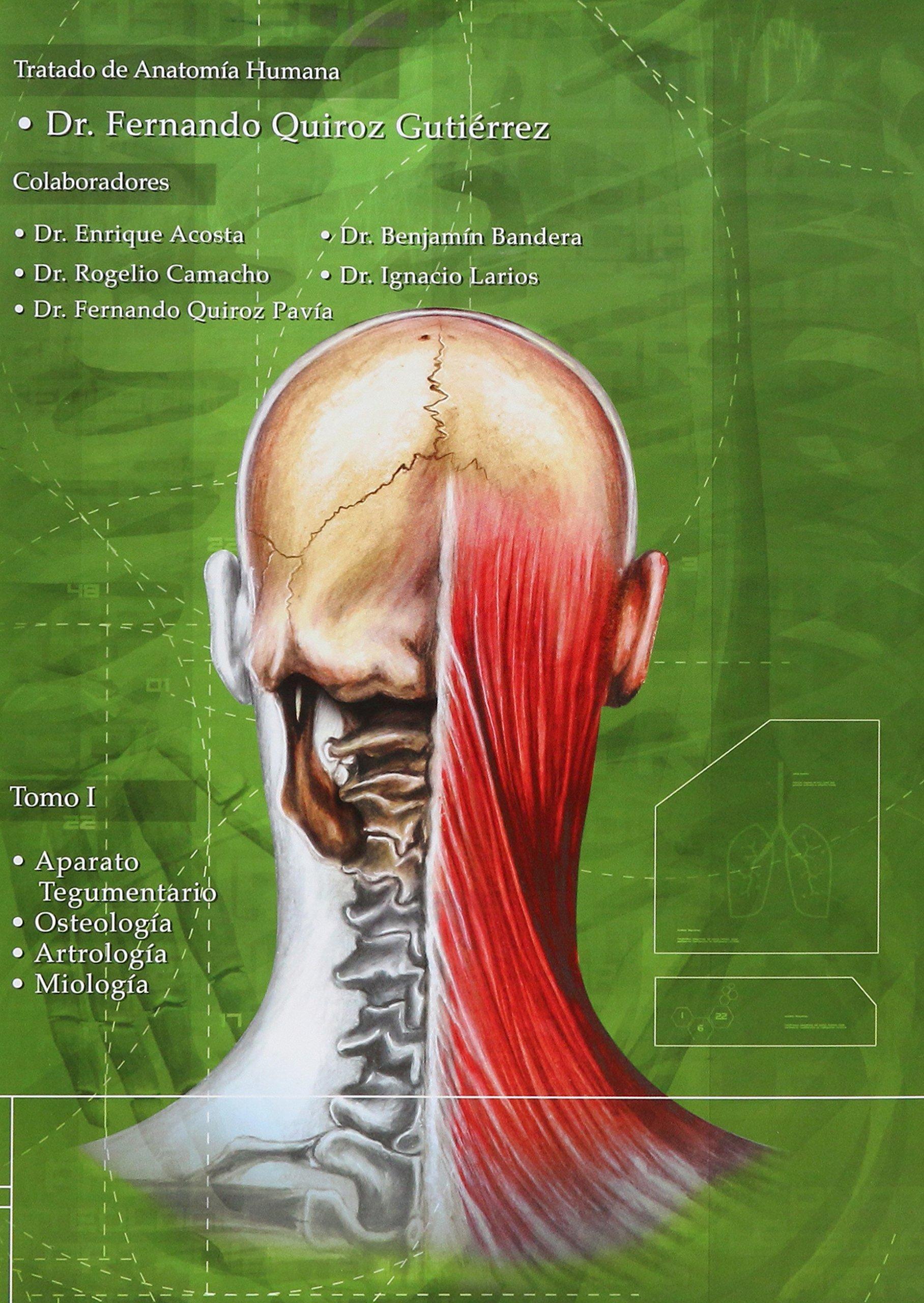 Anatomia Humana 1-3 (portada puede variar): Fernando Quiroz ...