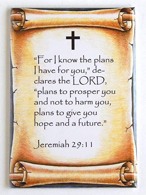 Amazon.com: Jeremiah 29:11 Bible Verse Fridge Magnet (2.5 x 3.5 ...