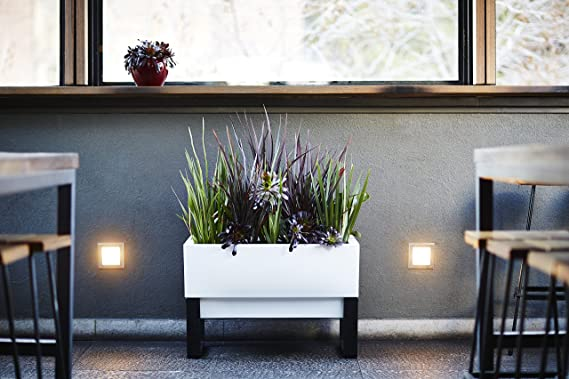 glowpear planter review