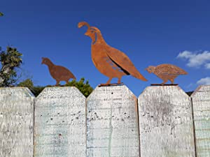 California Home and Garden CH8410 Metal Rustic Rust Set of 3 Quail Birds Silhouettes, 2 Inch Tall, Brownish Red