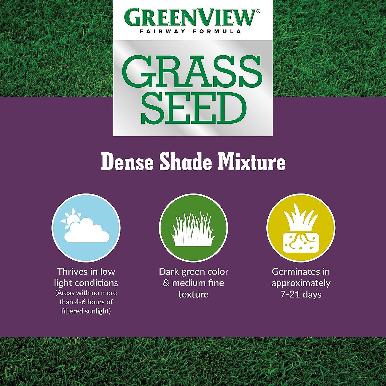 GreenView 2829342 Fairway Formula Grass Seed Dense Shade Mixture 3 lb
