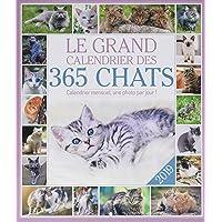Le grand Calendrier des 365 chats 2019