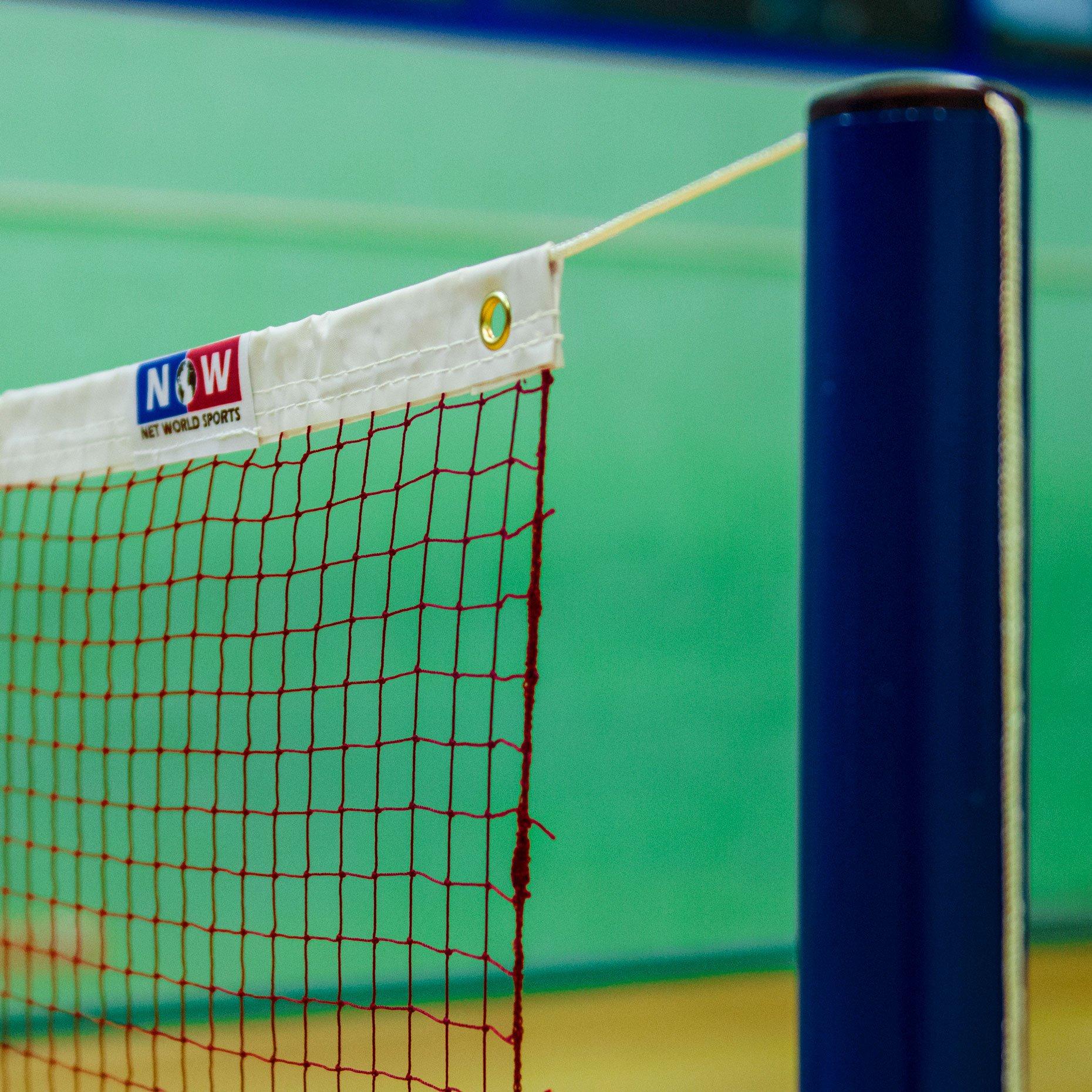 Badminton Net - Regulation 24ft Professional Net [Net World Sports] by Net World Sports