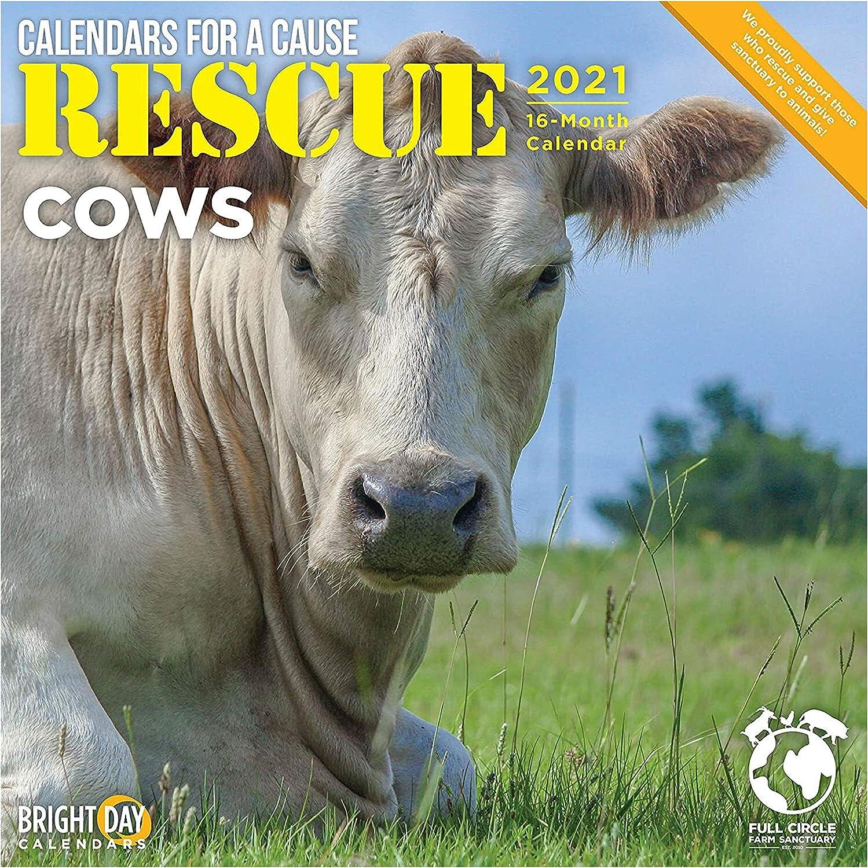 Cow Calendar 2021 Amazon.: 2021 Rescue Cows Wall Calendar by Bright Day, 12 x 12