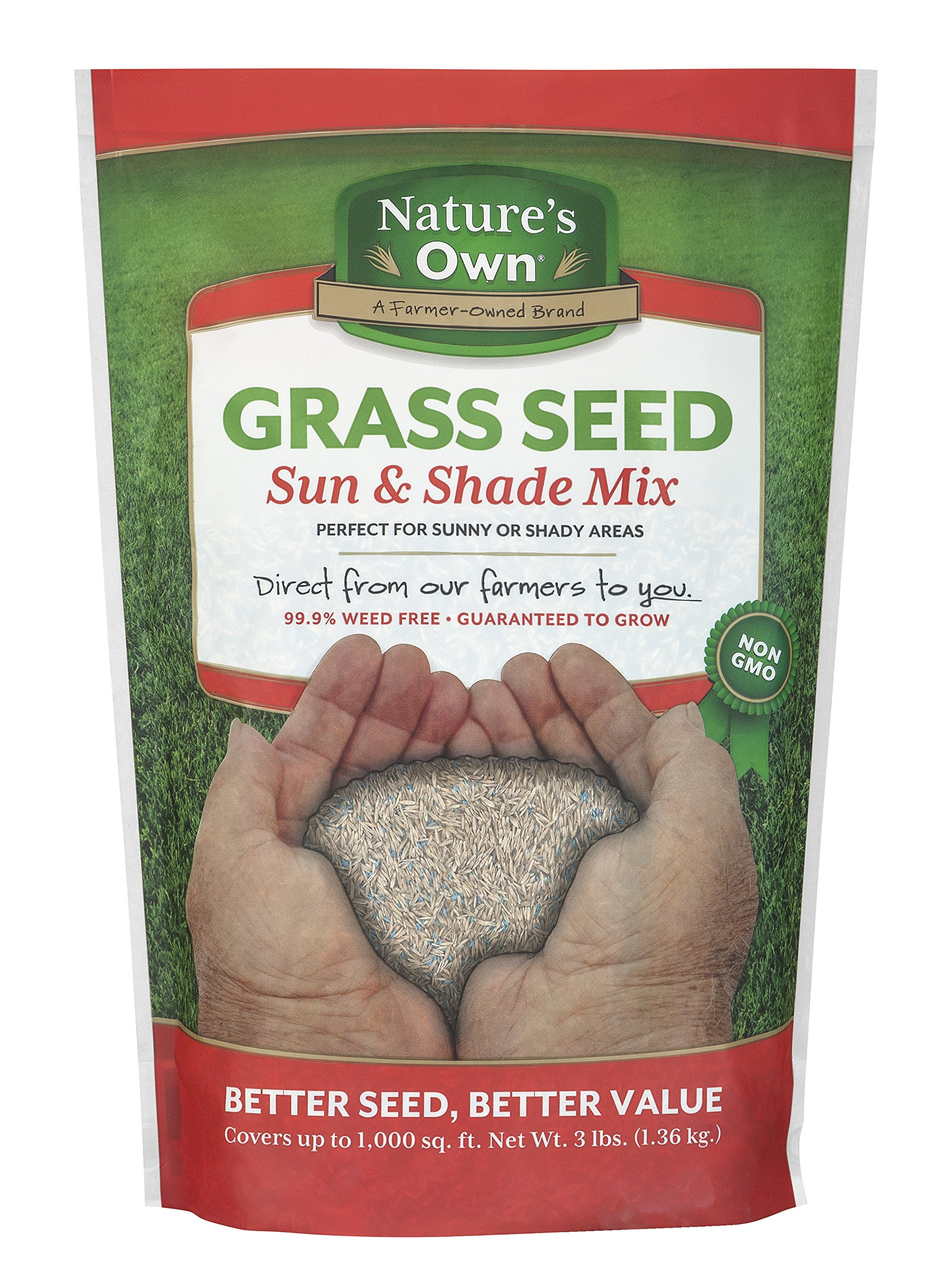 Mountain View Seeds Natures Own Sun & Shade Mix Grass Seed, 3-pounds by Mountain View Seed