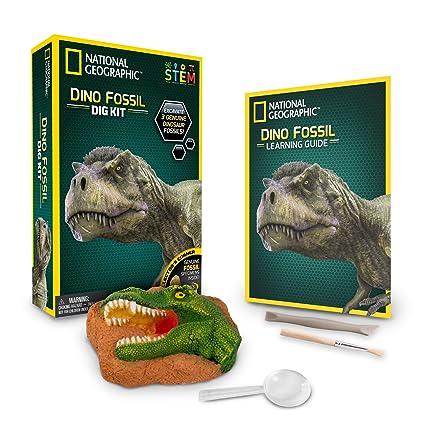 mcgraw hill dinosaur dig lab answers