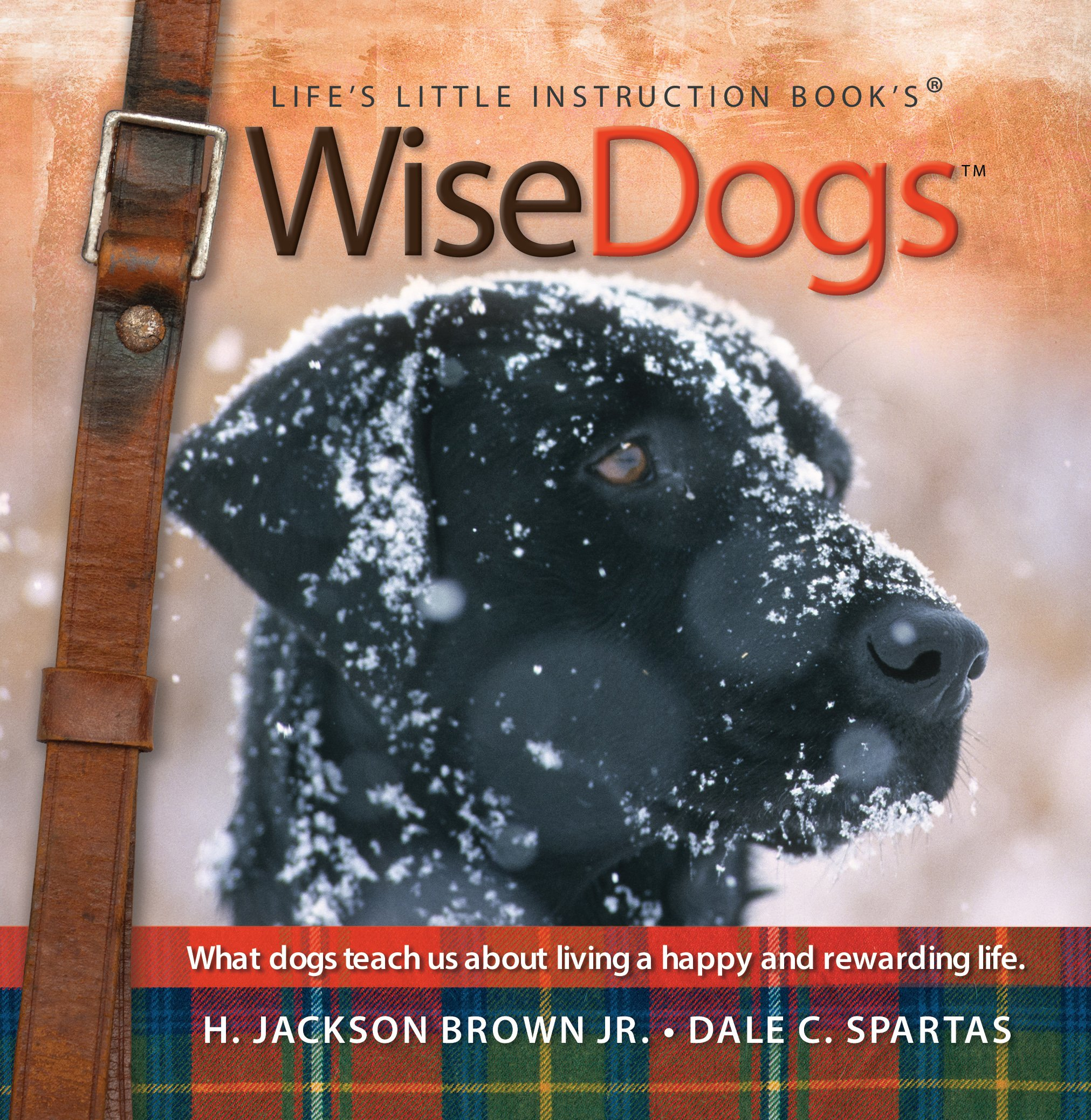 Read Online Wise Dogs: What dogs teach us about living a happy and rewarding life (Life's Little Instruction Book's) ebook