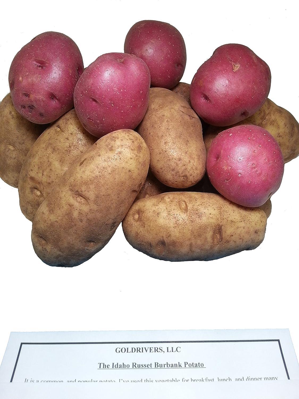 Amazon Com Potatoes Fresh Idaho Russet And Red Produce Bundle Grocery Gourmet Food