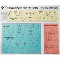 Trigger Point Pain Patterns Wall Charts