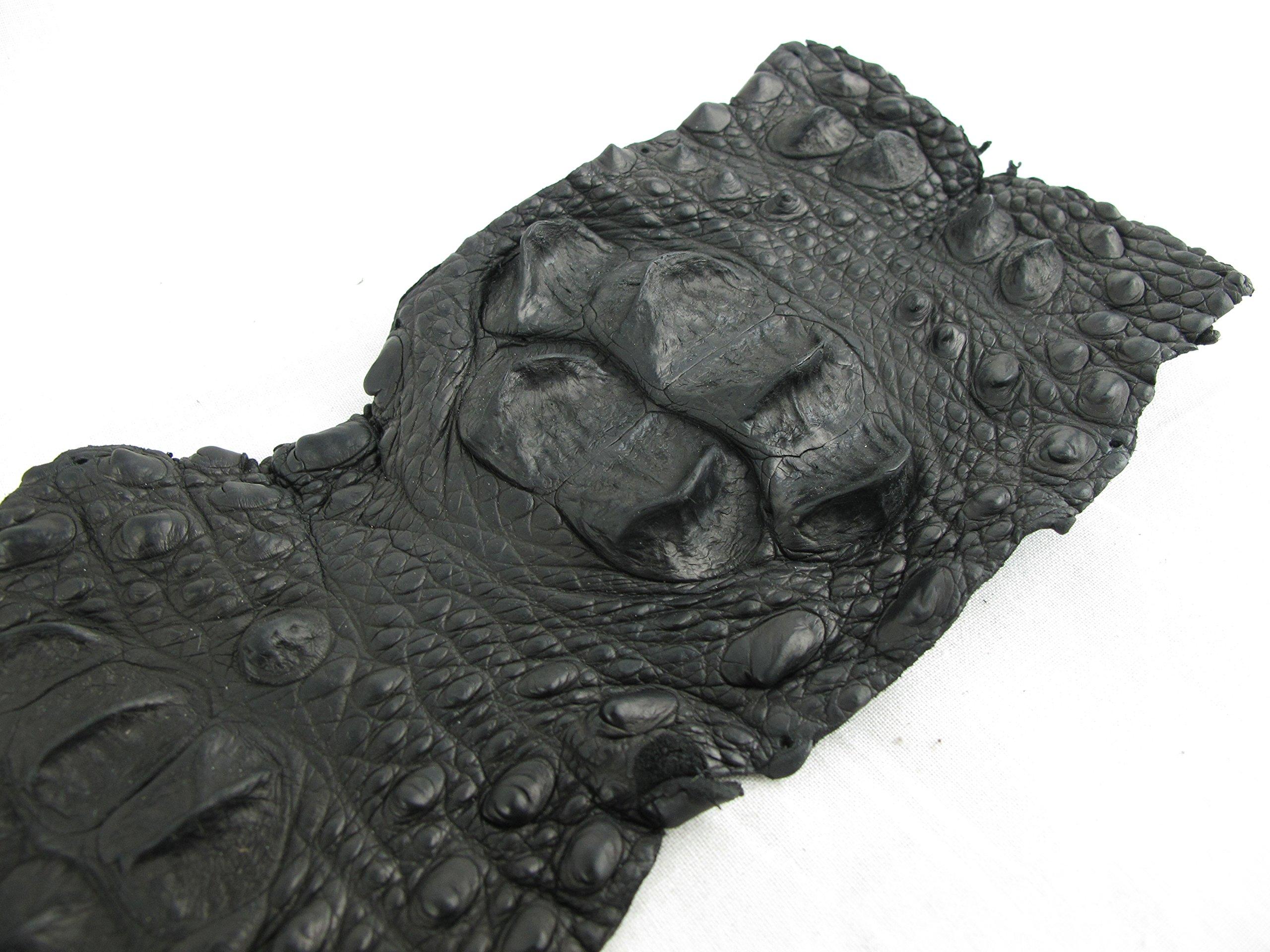 PELGIO Genuine Crocodile Alligator Hornback Skin Strap Leather Hide Pelt (5.5'' x 44'', Black)