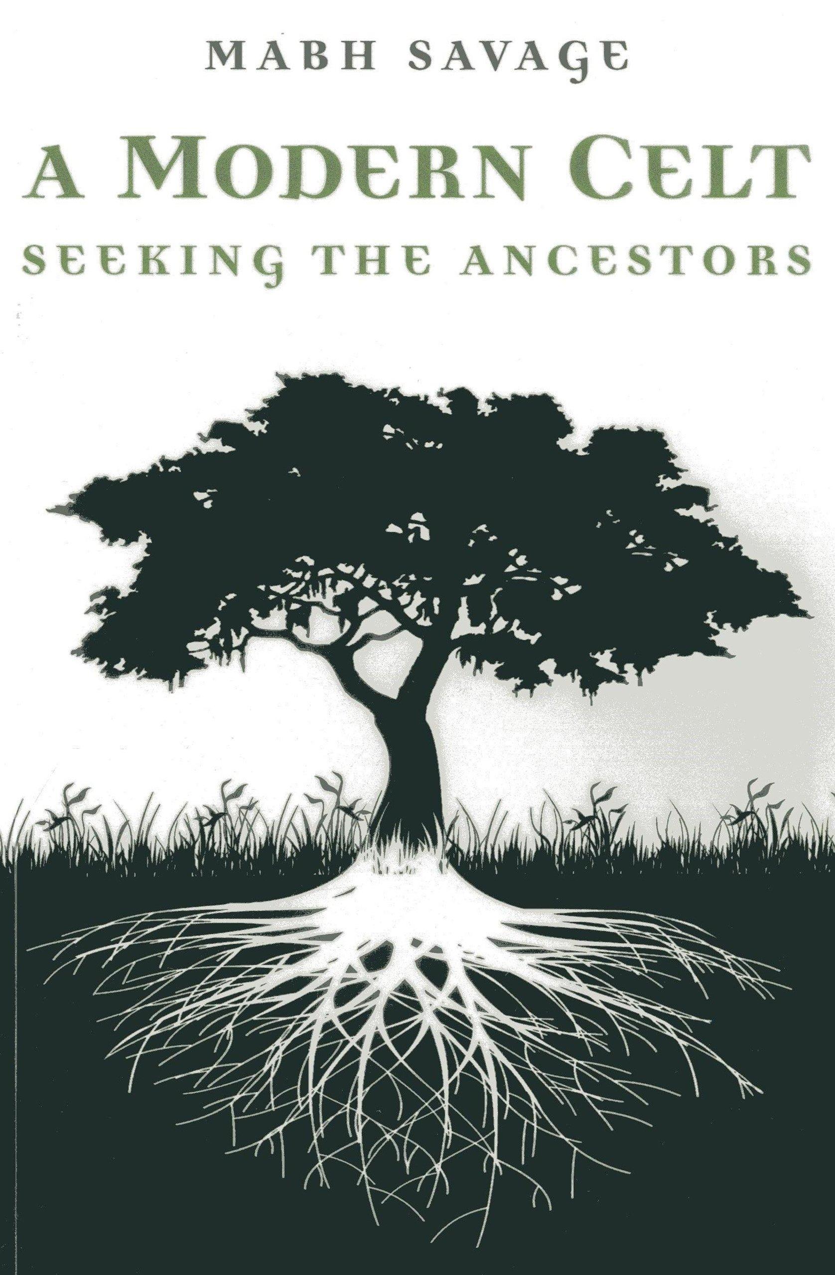 A Modern Celt: Seeking the Ancestors ebook
