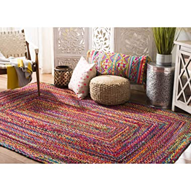 Safavieh Cape Cod Collection CAP202A Handmade Red and Multicolored Jute Area Rug (8' x 10')