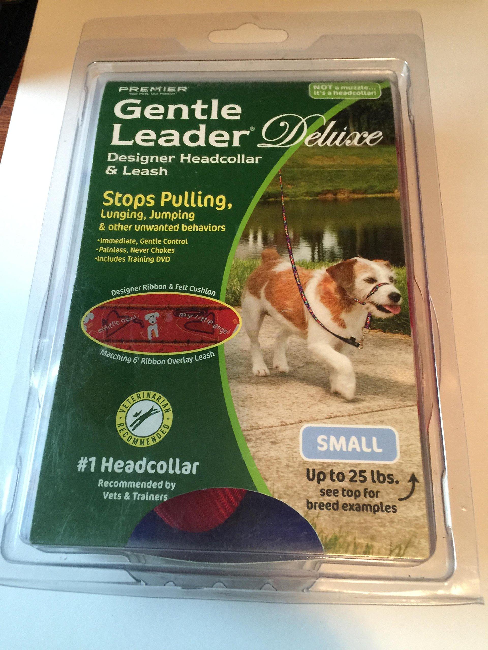 PetSafe Gentle Leader Deluxe Headcollar, Small, My Little Angel by PetSafe