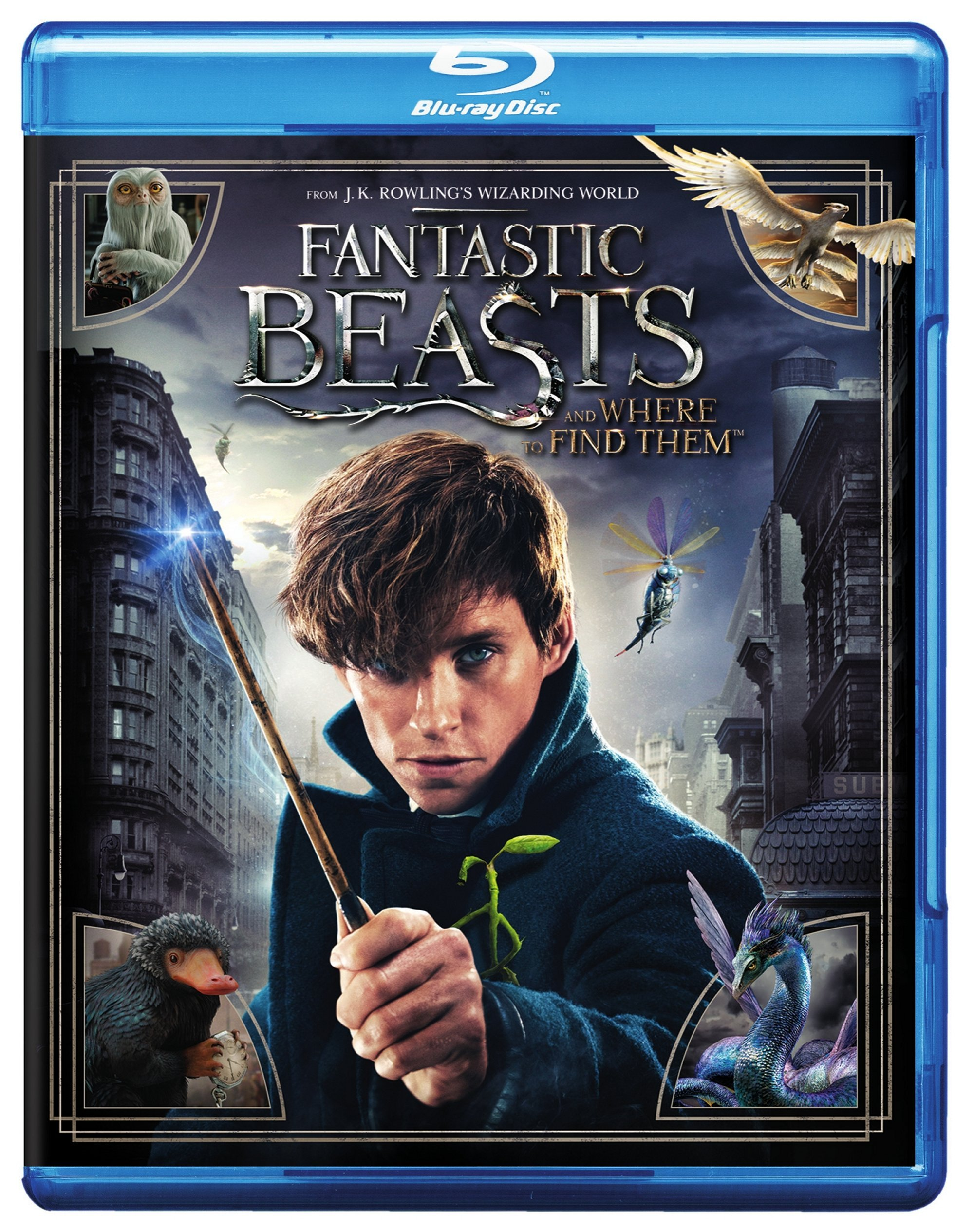 Blu-ray : Fantastic Beasts and Where to Find Them (With DVD, Ultraviolet Digital Copy, Eco Amaray Case)