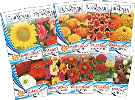 af3d7213a4 Garden Care Flowers Seeds For Summer Season (Pack Of 10)  Amazon.in  Garden    Outdoors