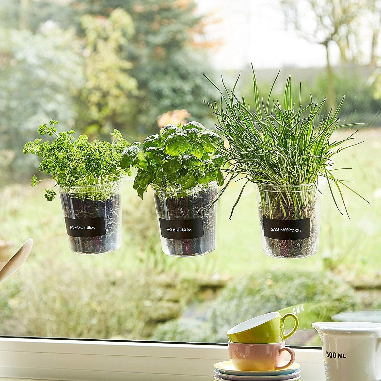 Maceta de hierbas 'Basil' para ventana de cocina, incluye lámina de rotulación y tiza, Fresh Herbs Trio | hierbas | Jardín | Decoración de ventanas | Regalo | Diámetro 13 cm | Altura: 16 cm