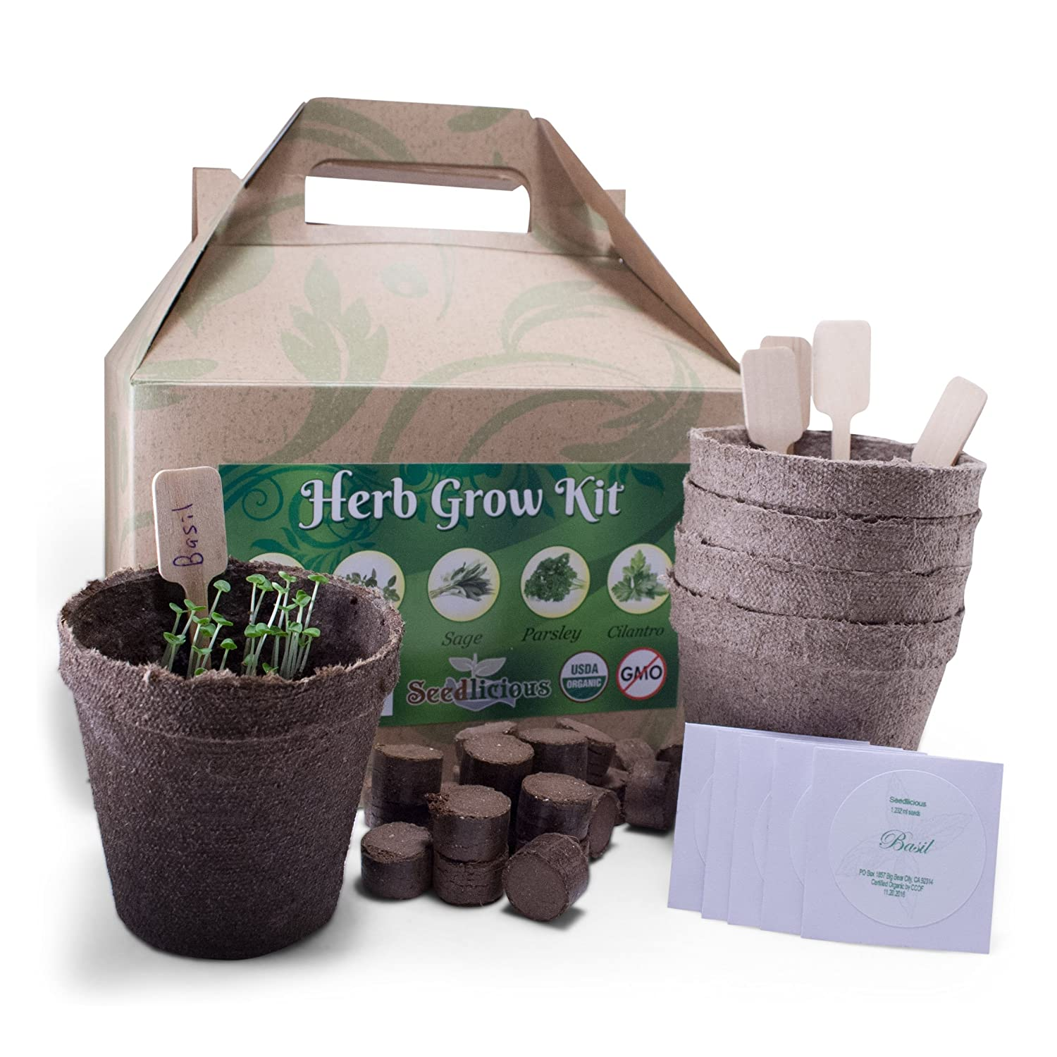 Organic 5 Herb Garden Planting Kit – Seed Starter Kit Includes Cilantro, Parsley, Thyme, Sage and Basil Plant Seeds