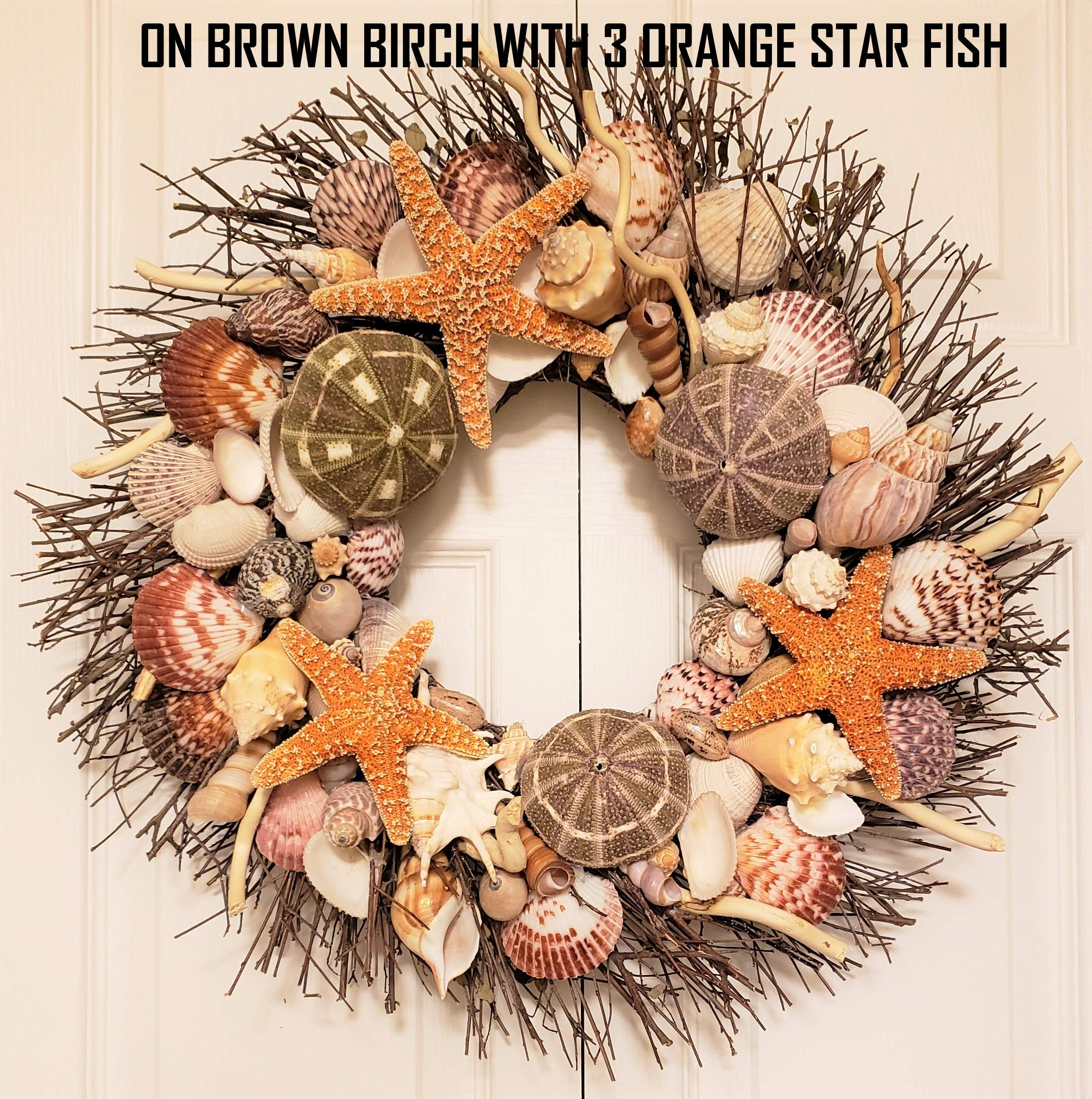 21'' Sea Shell Wreath on Birch Twig with Exotic Sea Urchins in 4 Designs by Ellie's Collections, Etc. (Image #2)