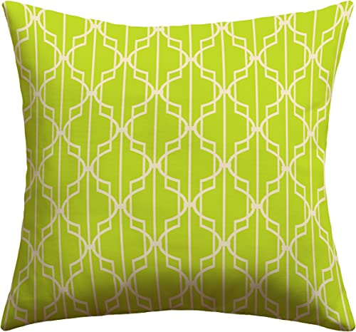 Deny Designs Mary Beth Freet Trellice Outdoor Throw Pillow, 26 x 26
