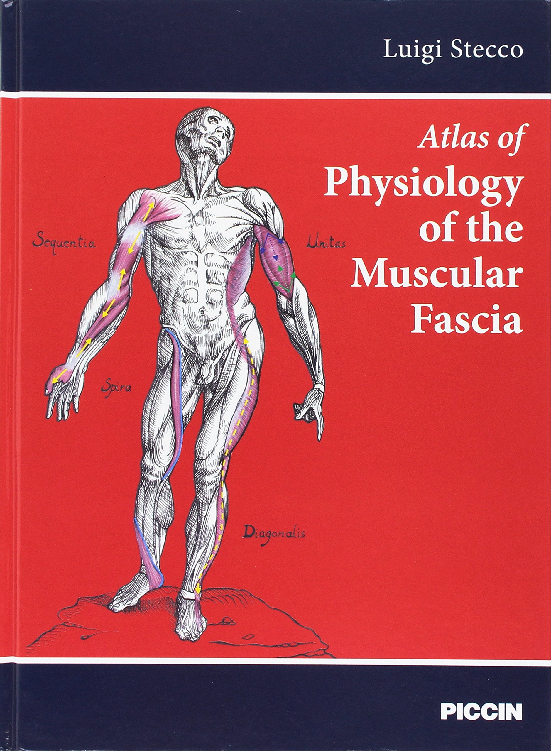 Atlas Of Physiology Of The Muscular Fascia Luigi Stecco