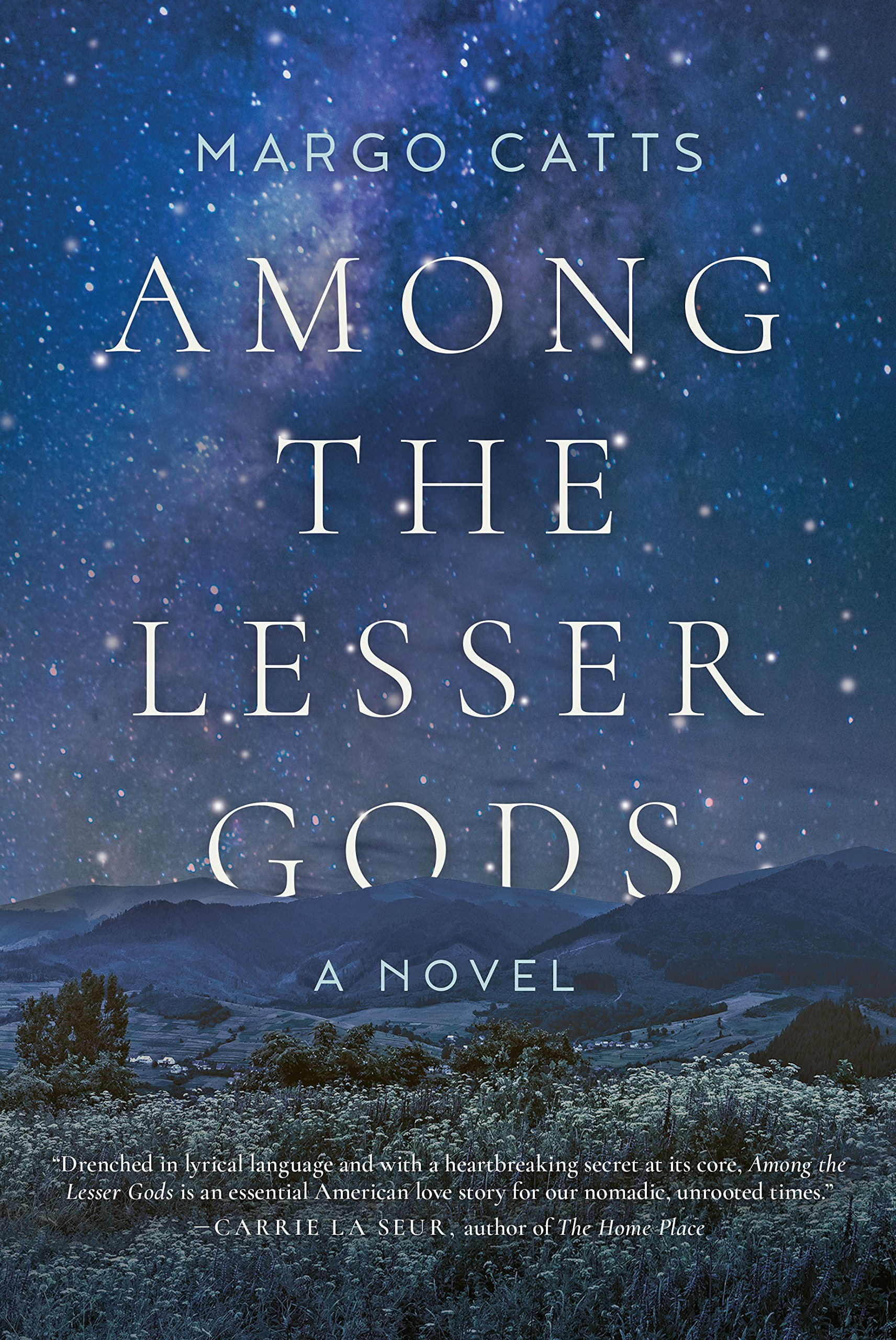 Among The Lesser Gods: A Novel: Margo Catts: 9781628727395: Amazon:  Books