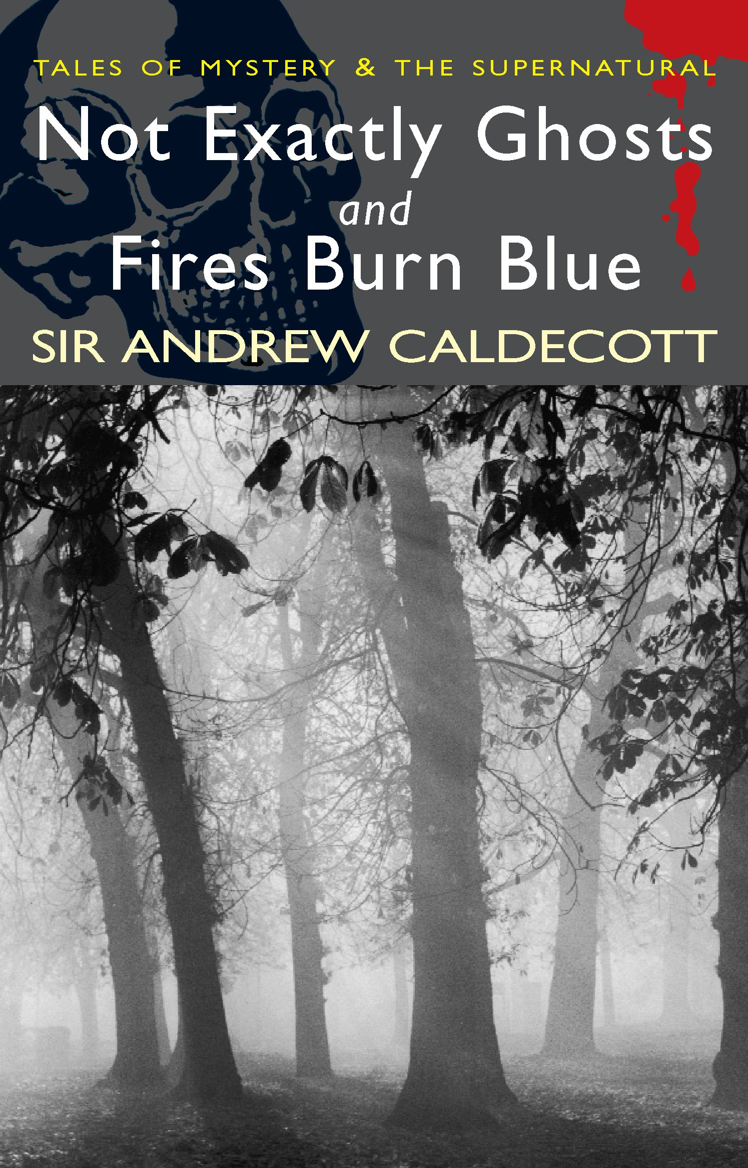 Read Online Not Exactly Ghosts/Fires Burn Blue (Tales of Mystery & the Supernatural) PDF