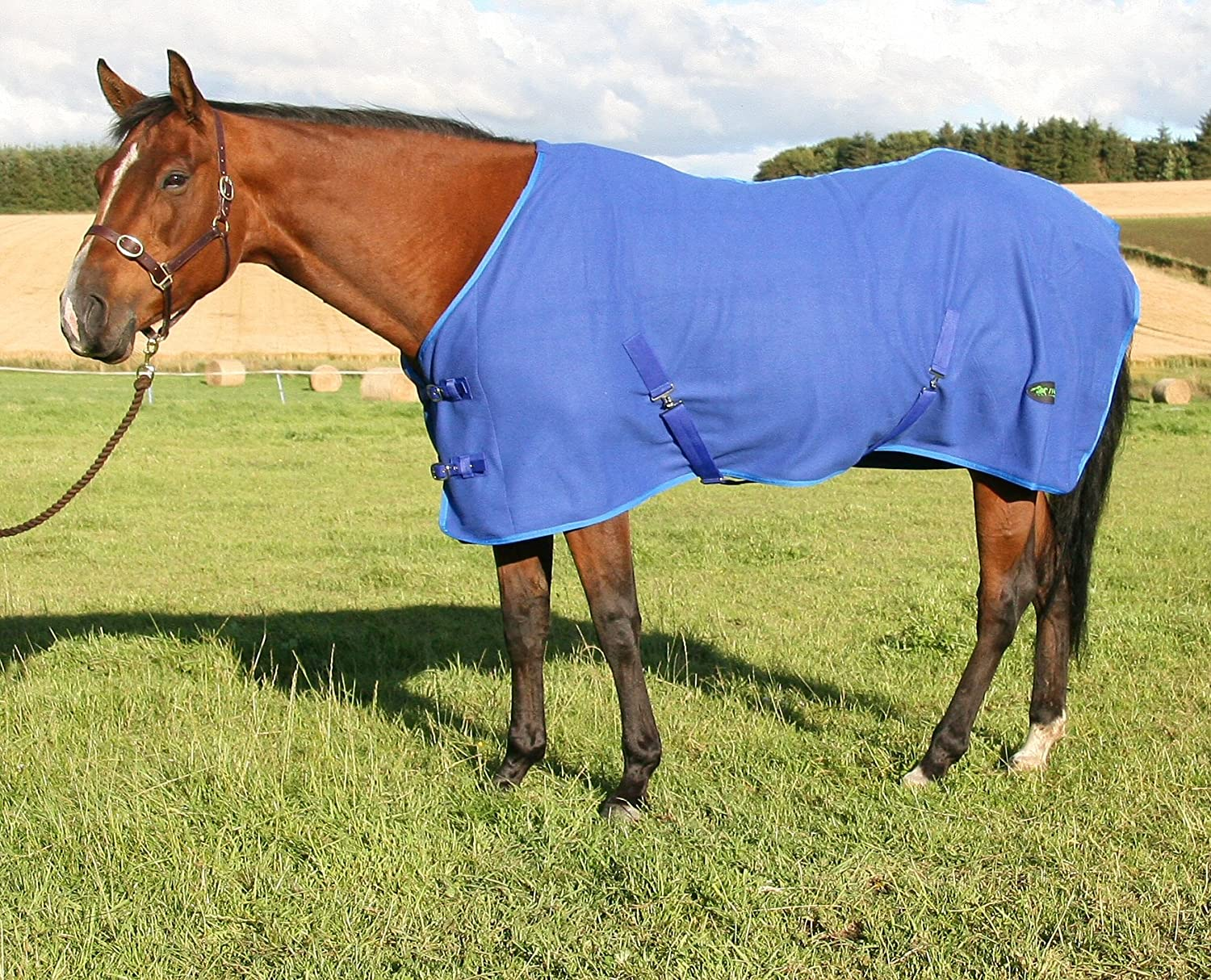 GS Equestrian Fleece Rug GSE500