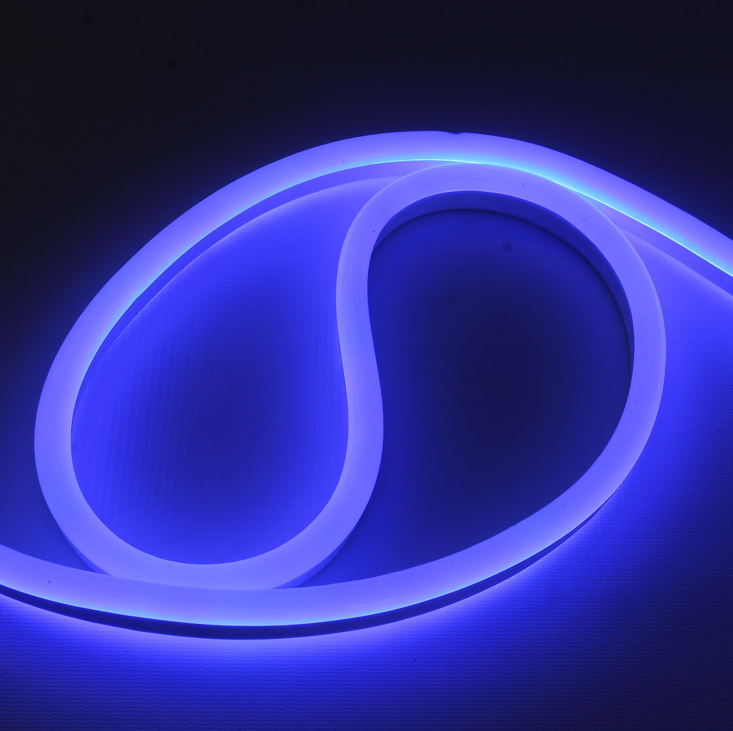 12 Volt LED Flex NEON Light Strip LED Neon Flex Light, 65 Ft, Blue Waterproof Resistant, Accessories Included Ideal For Home Improvement Outdoor Rope Lighting [Ready to use] (Blue) by TOPATOM