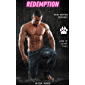 Redemption: Lions of Locust Falls 1 (English Edition)