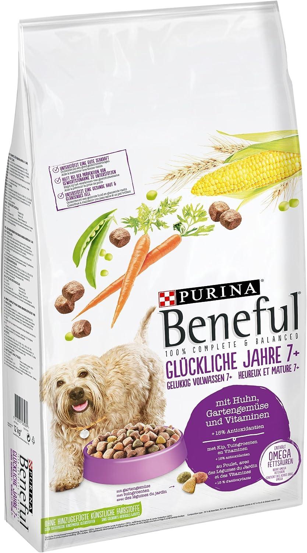 bestes Hundetrockenfutter