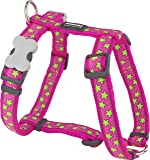 Red Dingo Desinger Dog Harness, Lime Stars on Hot Pink (20mm x Neck: 36-59cm / Body 45-66cm) M