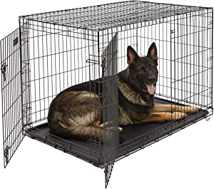 Best Dog Crate for Akita Dog