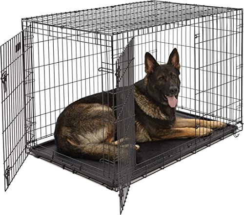 Best dog crates overall: MidWest Homes for Pets Dog Crate