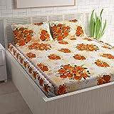 Divine Casa Basics 104 TC Cotton Double Bedsheet with 2 Pillow Covers - Floral, Orange