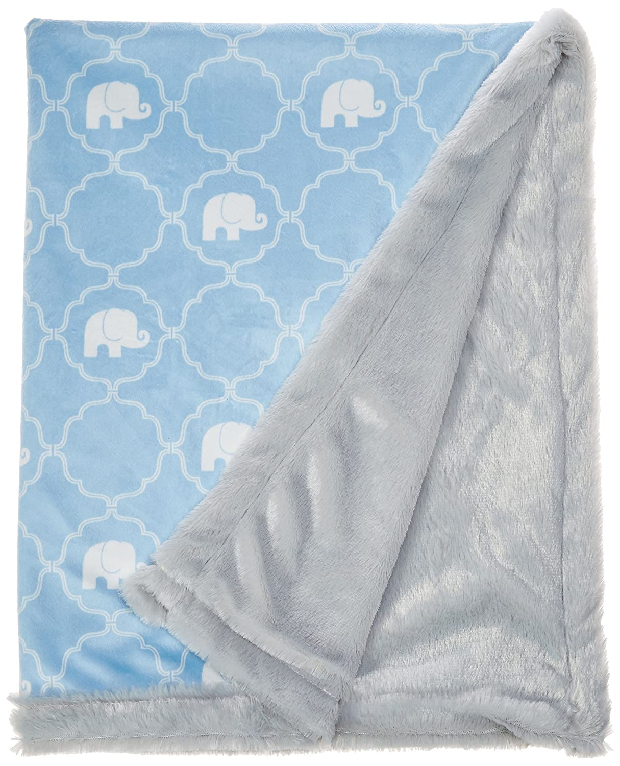 Hudson Baby Plush Blanket with Furry Binding & Back, Modern Floral 50923_ModernFloral