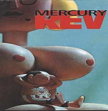 mercury rev boces