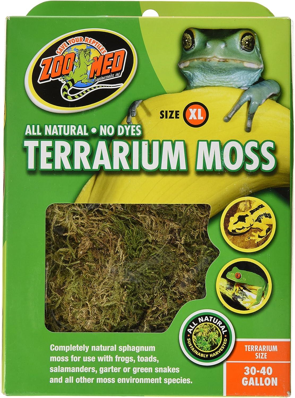 B0002AQBBA Terrarium Moss for Amphibians/Reptiles 91F9tpL32BuL
