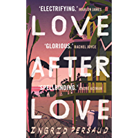 Love After Love: The most electrifying novel you will read all year (English Edition)