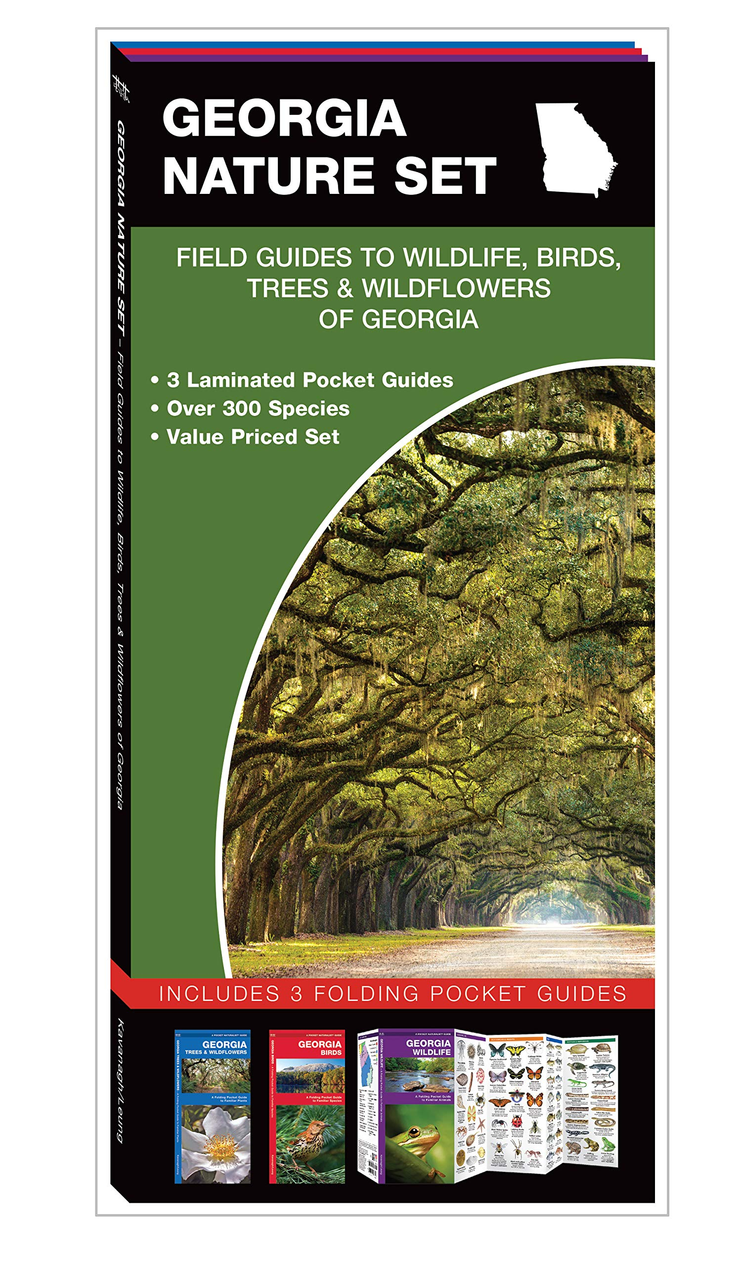 Georgia Nature Set: Field Guides to Wildlife, Birds, Trees & Wildflowers of Georgia ebook