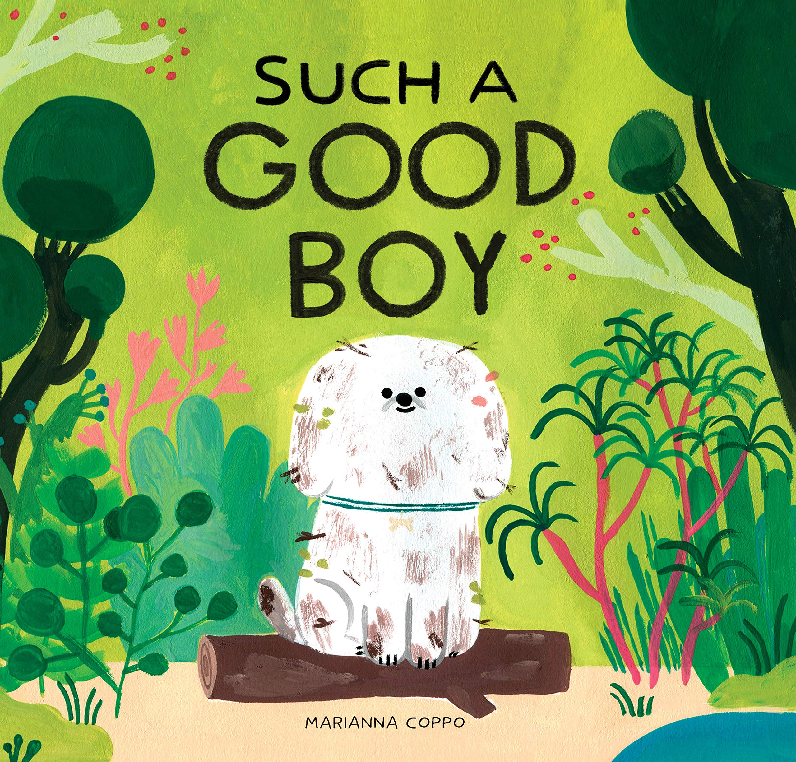 Image result for such a good boy amazon