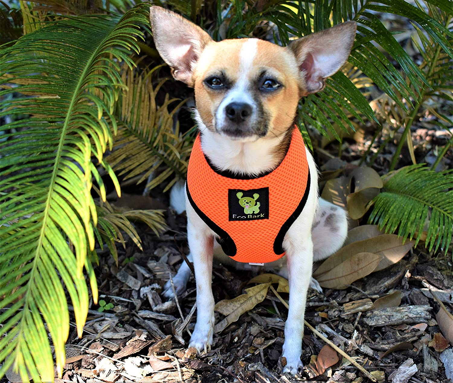 X-Small, Yellow EcoBark Dog Harness No-Pull Pet Harness Adjustable Outdoor Pet Vest ROSH Material Vest for Dogs Eco-Friendly Easy Control for Small Medium Large Dogs